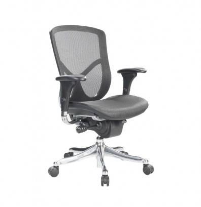 Eurotech Fuzion Luxury FUZ8LX-LO Mesh Mid-Back Executive Office Chair