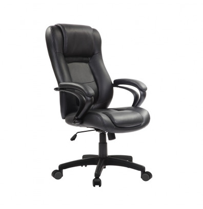 Eurotech Pembroke Le521 Spring Cushion Leather High Back Executive Office Chair