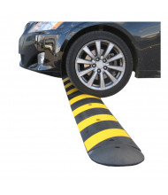 Checkers 6 ft. GNR Easy Rider Recycled Rubber Speed Bump