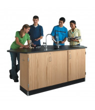 Diversified Woodcrafts Forward Vision II Science Lab Workstation (example of use)