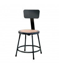 "NPS 18"" Backrest Science Lab Stool (Shown in Black)"