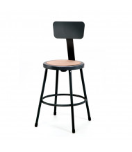 "NPS 24"" Backrest Science Lab Stool (Shown in Black)"