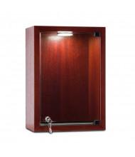 "Tecno C22 10"" W Rectangular Shadow Box Wall Display Case 6"" D x 14"" H (in mahogany)"