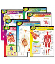"Trend The Human Body 17"" x 22"" Learning Chart Combo Pack, 7/Pack"