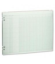 "Wilson Jones 14"" x 11"" 10-Column Loose Accounting Paper, 100-Sheets"