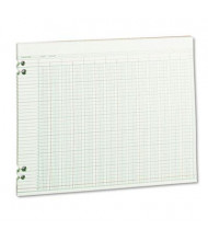 "Wilson Jones 14"" x 11"" 24-Column Loose Accounting Paper, 100-Sheets"