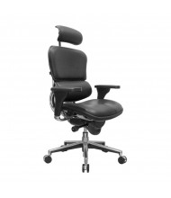 Eurotech ErgoHuman LE9ERG Multifunction Leather High-Back Executive Office Chair, Headrest