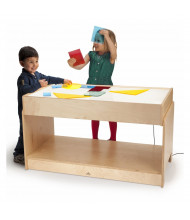 Whitney Brothers Superbright LED Large Light Table