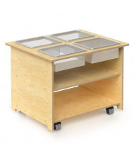 Whitney Brothers 4 Tub Sensory Table