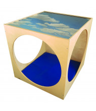 Whitney Brothers Plexi Top Play House Cube with Floor Mat