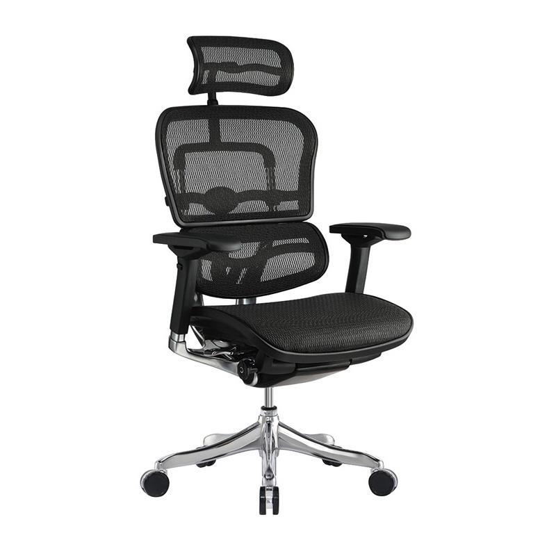 Eurotech Ergo Elite ME22ERGLT Mesh High-Back Executive Office Chair ME22ERGLT-N15