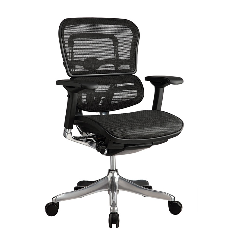 Eurotech Ergo Elite ME5ERGLTLOW Mesh Mid-Back Executive Office Chair ME5ERGLTLOW-N15