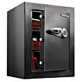 Sentry T8-331 Home Security Safe
